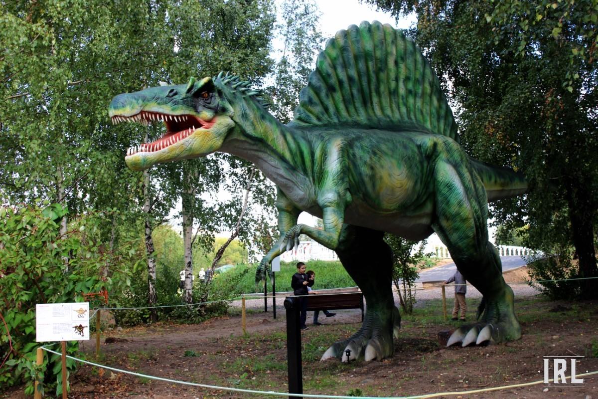Один из самых впечатляющих экспонатов – 18-ти метровый спинозавр.