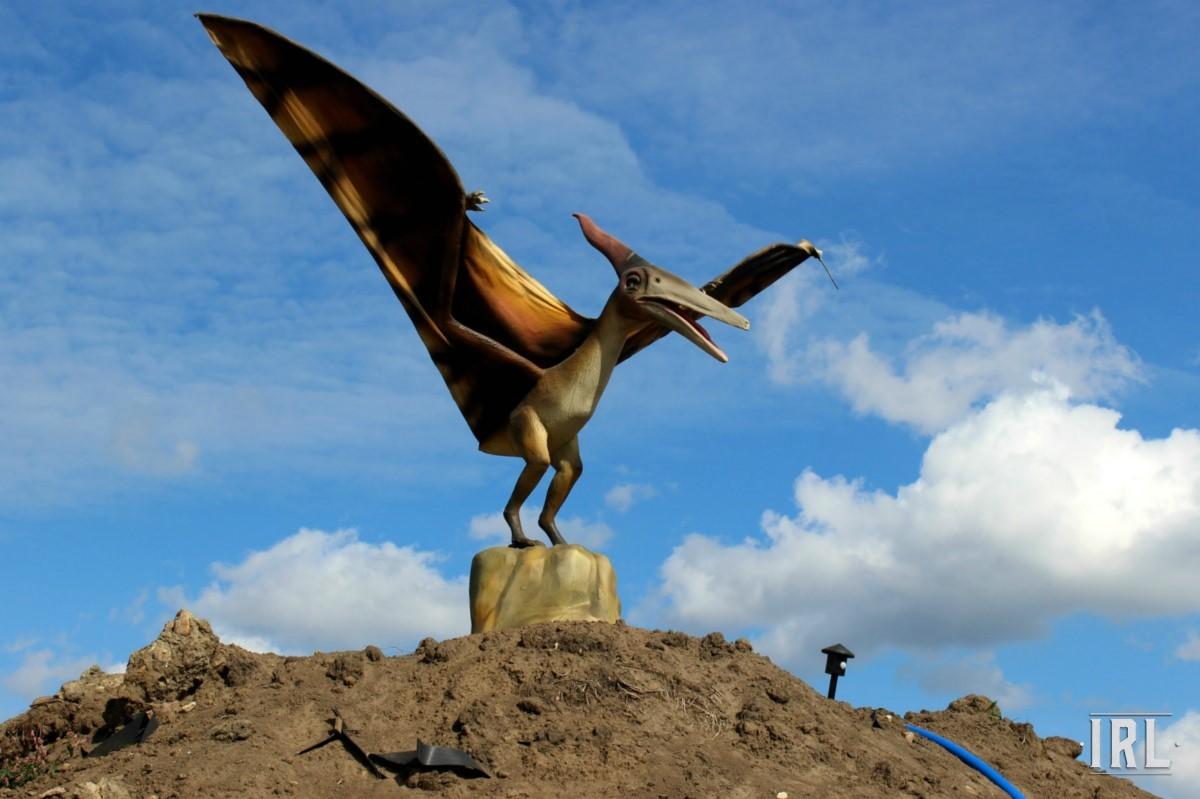 Единственный экспонат с крыльями – 6-ти метровый птеранодон, готовящийся к полету из сердца ДиноПарка.