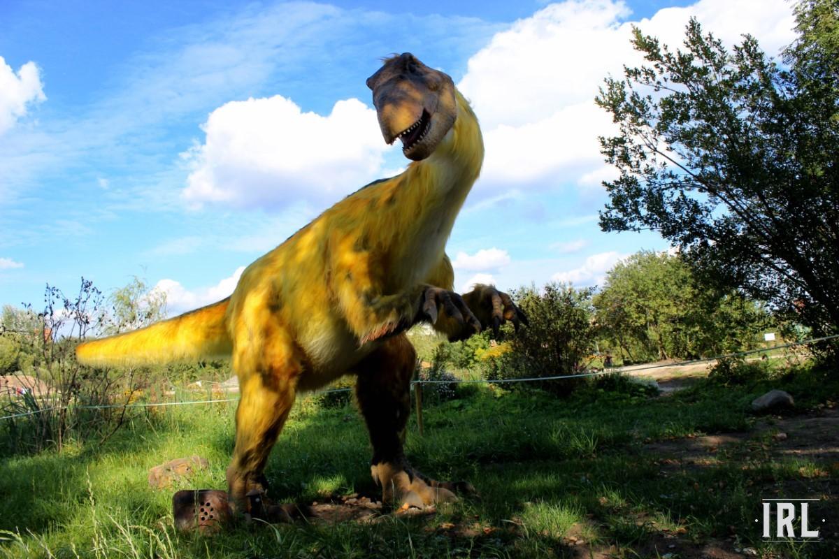 Эта рептилия получает звание самого странного экспоната из всего парка. Существо покрыто «оперением», как написано на информационной табличке. Однако этот желтый мех навевает мысль о том, что динозавр отлично вписывался бы в гостиную долгими зимними вечерами.